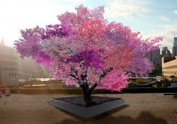 © Sam van Aken, Tree of Forty Fruit used in accordance with Fair Use Policies