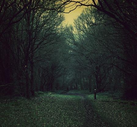 spooky-450795_640