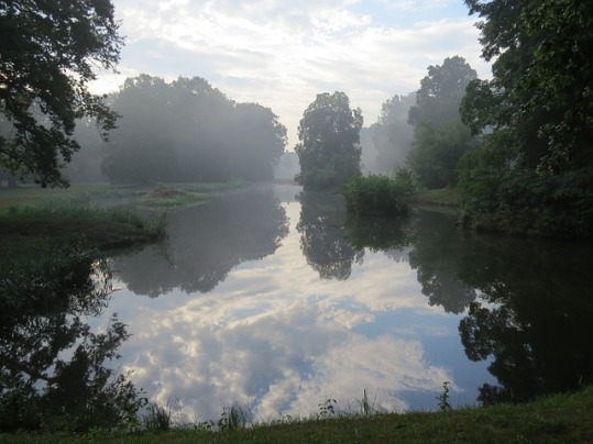 pond-432279_640
