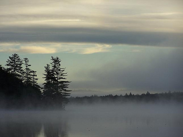 Misty Dawn © twistedhaloproductions with CCLicense