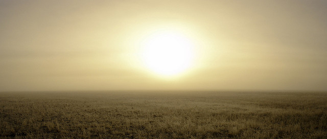 Foggy sunrise over pasture near Canby © Miguel Vieira with CCLicense