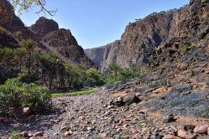 Wadi, Socotra Island