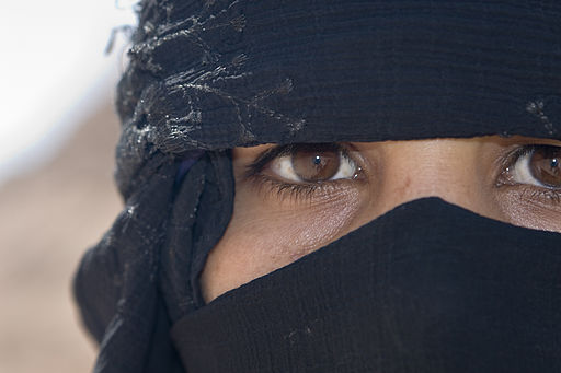 512px-Flickr_-_DavidDennisPhotos.com_-_Woman_in_Desert_near_Sharm_el_Sheik.jpg