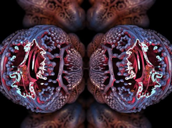fractal-2053729_960_720.jpg