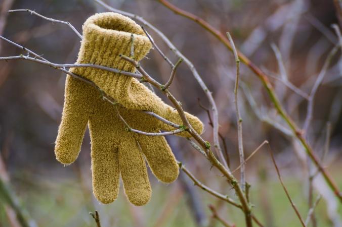 Lost Children Glove.jpg